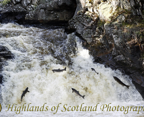 NC500 trip to falls of Shin